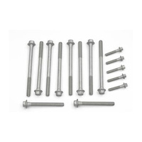 GM Head Bolts LS1 LS2 L76 L98 LS3 [PART NUMBER: HBK6906D] [MODEL: 2000 - 2003 (LS1)]